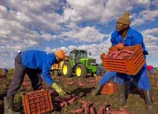 Lavoratori migranti (www.eunews.it)