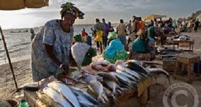 Pescatori in Senegal Fonte Africaeaffari