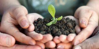 ASeS - Agricoltori Solidarietà e Sviluppo