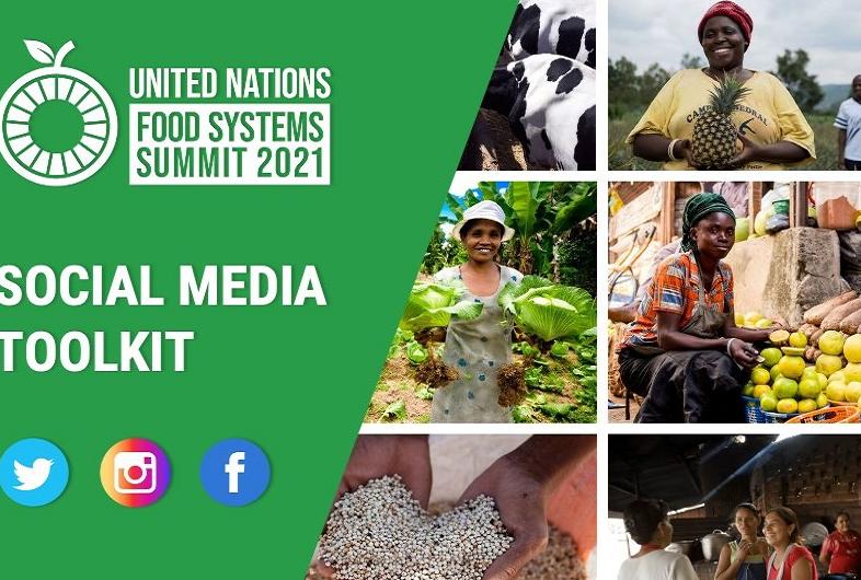 Sistemi alimentari e fame nel mondo - Pre-Vertice Onu